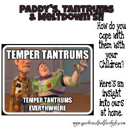 Featured image for the post paddy's tantrums and meltdowns