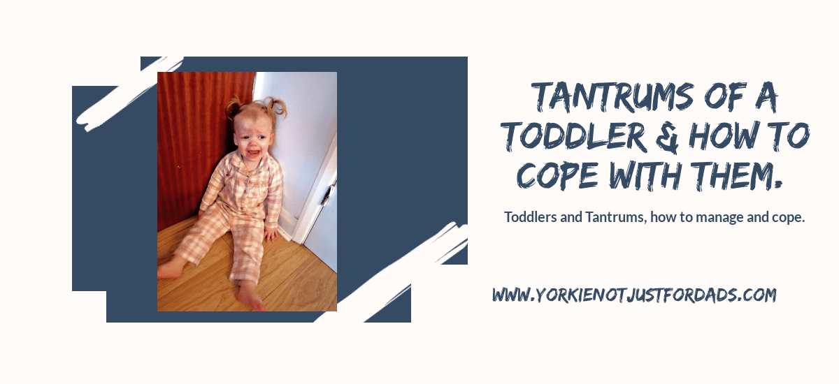 Featured image for the post tantrums with a toddler